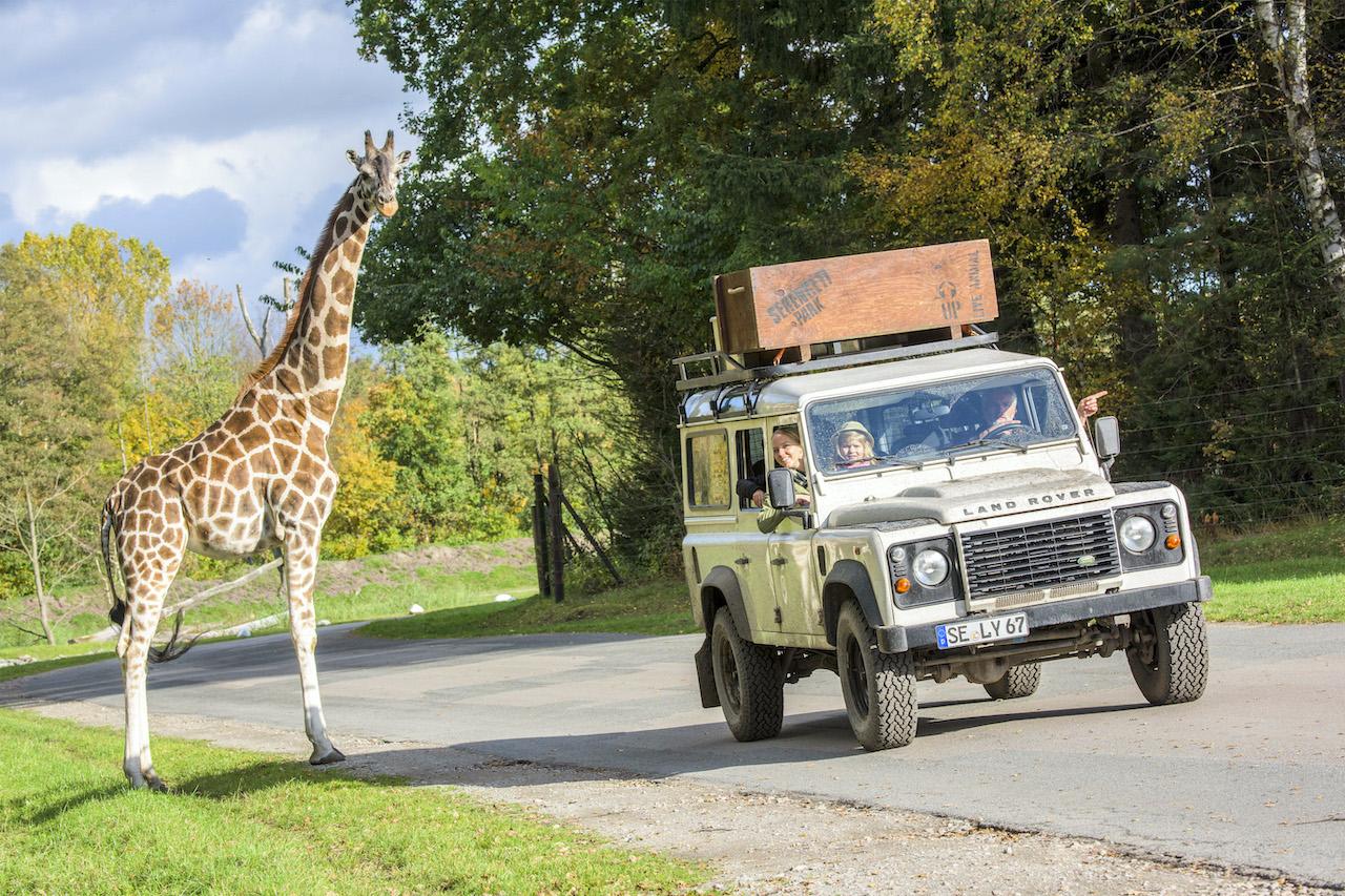 Abenteuer im Serengeti-Park